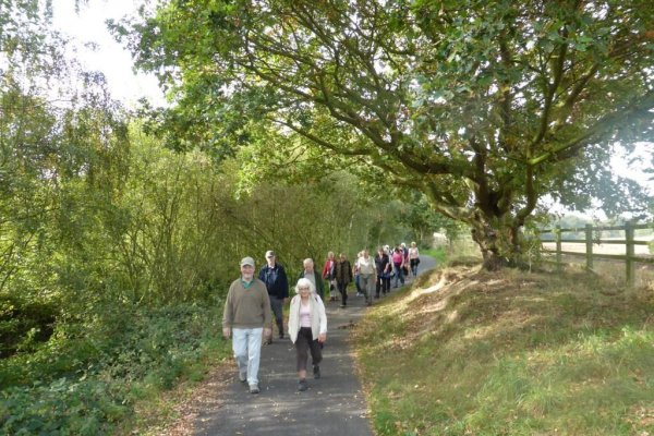 NK Social Strollers receives national accreditation for quality health walks