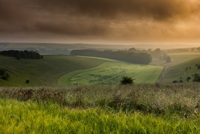Wolds businesses benefit from tourism boom