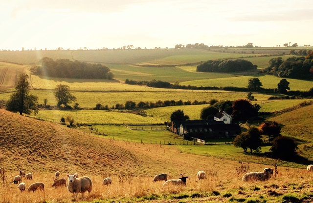Landmark case as Lincolnshire land gains 14 acres with £14,000 value