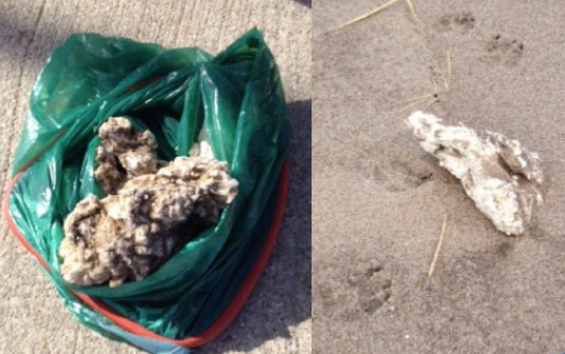 Petroleum wax appears on East Lincolnshire beaches