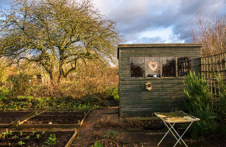 Urgent advice to allotment owners after shed burglary series