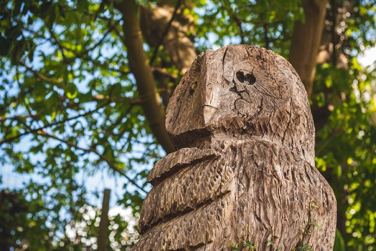 Winterton prepares for sculpture trail – it's sure to be a hoot