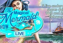 Half term mermaid magic at Skegness Aquarium