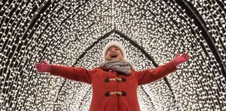 Belton Christmas Lights 2019 Discover the magic of Christmas at Belton   Lincolnshire Today