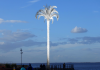 Grant to transform Cleethorpes North Prop with lights, art & giant palm tree
