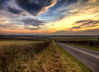 Public asked to help fill gap in hedgerow knowledge