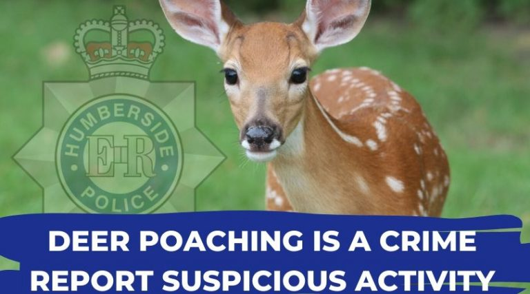 Christmas Eve deer hunters found guilty