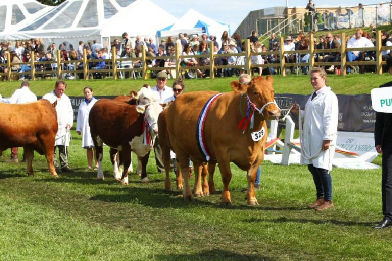 Coronavirus sees this year's Lincolnshire Show cancelled