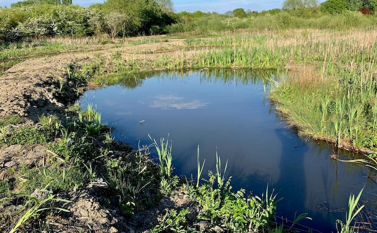 Charity calls on Lincolnshire landowners for wildlife pond scheme